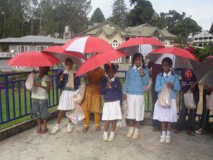 Fått paraplyer